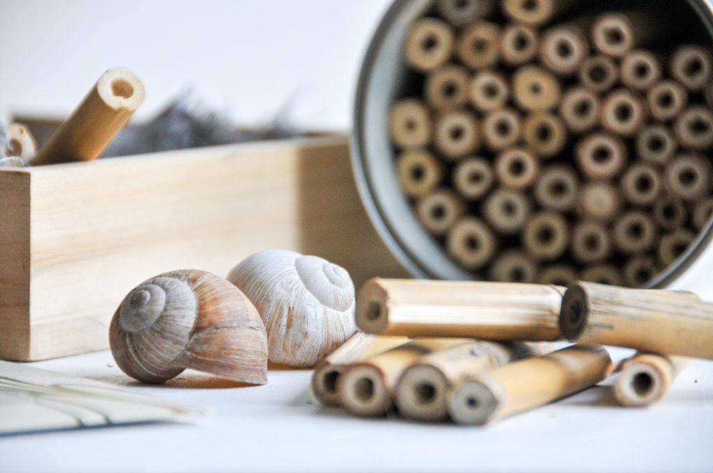 DIY Bienenhotel   mehr Bienen mit der Nützlingsweide von JA! Natürlich