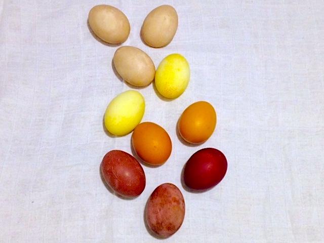 Eier färben mit Naturfarben | einfach und natürlich