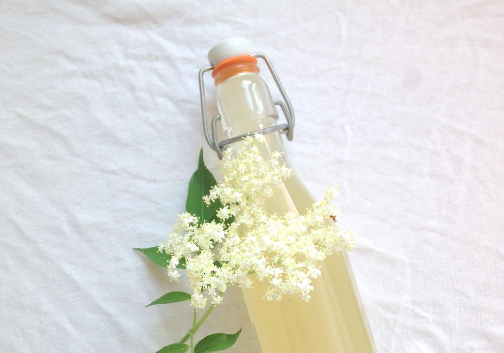 Hollerzeit | sommerliches Holunder Sirup Rezept