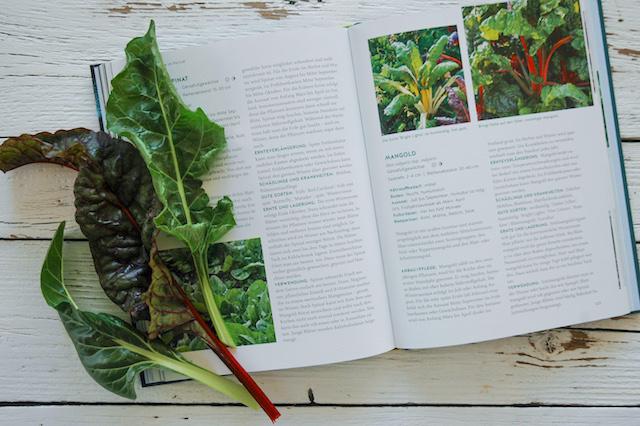 Wintergemüse anbauen | der Gemüsegarten im Winter