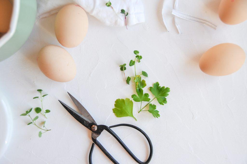 Eier färben mit Naturfarben | natürliche Farben für Ostereier